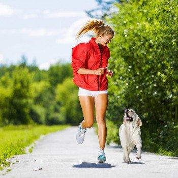 Výbehy a cvičiská pre psov